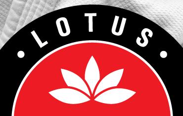 Про карате клуб, логотип лотос, Вінниця