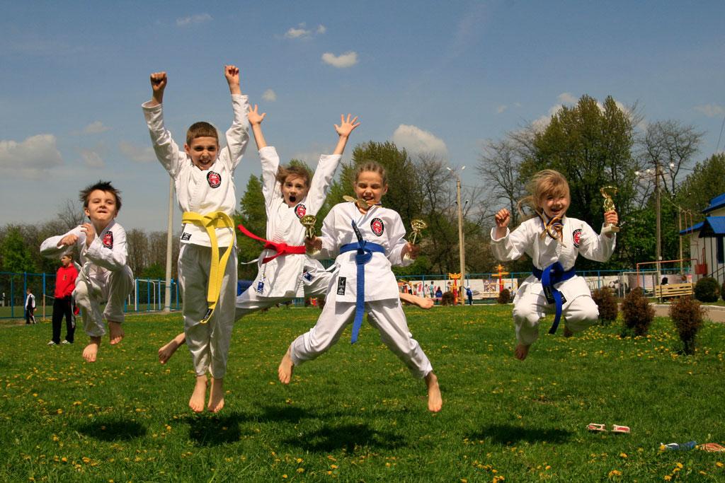 Соревнования по каратэ Chernivtsi Open 2014